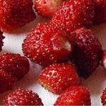fresas de aranjuez